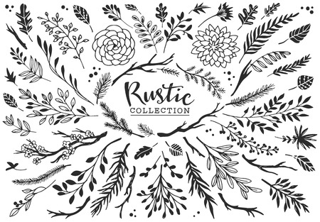 Rustic decorative plants and flowers collection. Hand drawn vintage vector design elements.