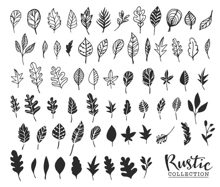 plant hand: Hand drawn vintage leaves. Rustic decorative vector design elements.