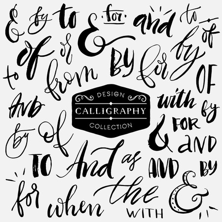 style artistic: Ampersands and catchwords. Handwritten calligraphy and lettering collection. Hand drawn design elements.