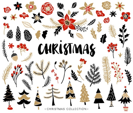 seasons greeting card: Christmas set of plants with flowers, spruce branches, leaves and berries. Christmas trees. Handwritten modern brush lettering. Hand drawn design elements. Illustration