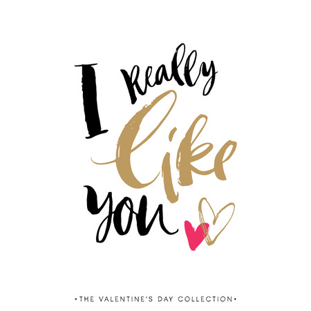 I really like you. Valentines day greeting card with calligraphy. Hand drawn design elements. Handwritten modern brush lettering. Vectores