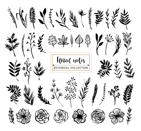 Floral notes botanical collection. Flowers, branches, and leaves. Hand drawn design elements. Nature vector illustration. Çizim