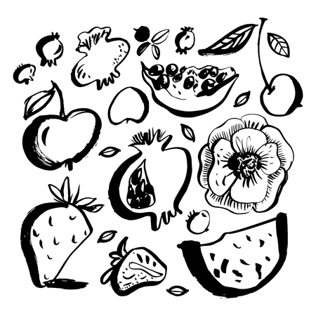 Fruits and berries. Watermelon, pomegranate, apple, cherry, blueberry, strawberry. Brush painted doodles. Hand drawn design elements. Vector illustration.