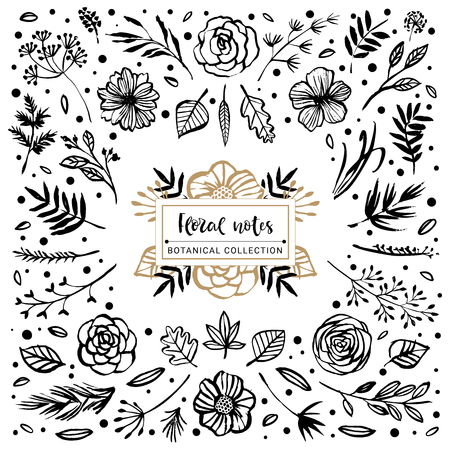 Floral notes botanical collection. Flowers, branches, and leaves. Hand drawn design elements. Nature vector illustration.  イラスト・ベクター素材