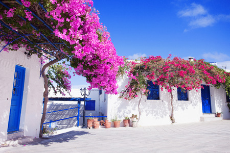 Traditional greek house with flowers in Paros island, Greece. Blue door and blue window surrounded by magenta flowers.