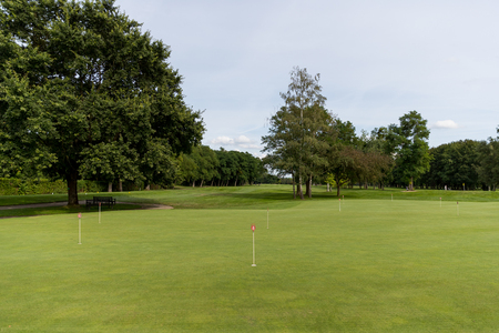 putting: Golf putting green surrounded by trees Stock Photo
