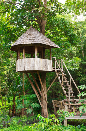Cute wooden tree house for kids in tropical forest Stok Fotoğraf
