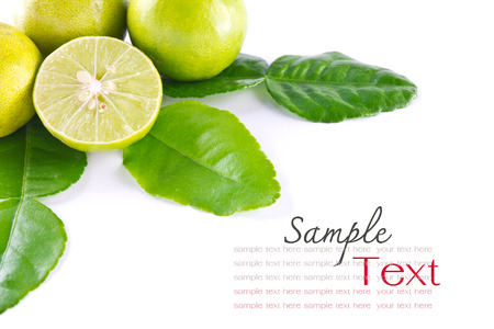 Kaffir leaves and lime on white background
