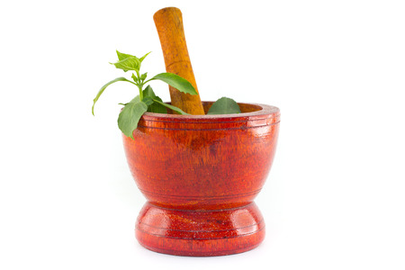 Fresh herbs with wooden mortar Stock Photo