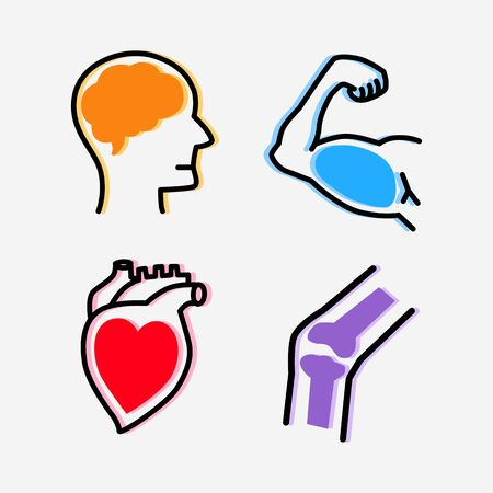 Set of organs design conceptual style, Smart brain, Strong healthy  heart, Powerful muscles arm and Strong bone, Health care concept.