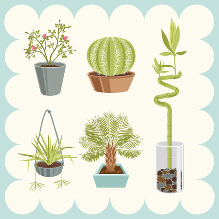 Illustration of Home Plants Stock Vector - 4719116