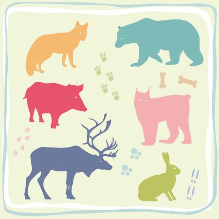 Colored Wild Animals Set Vector