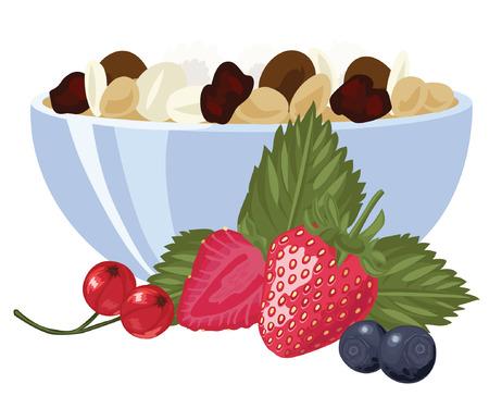 果実とミューズリー  イラスト・ベクター素材