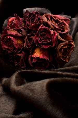 Bunch of red dry roses on black fur photo