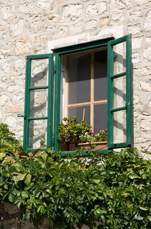 Overgrown window in country house photo