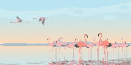 flamingi: Grupa różowych flamingów w zatoce Ilustracja