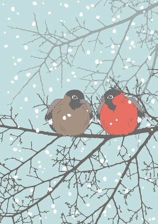 snow forest: Two bullfinches sitting on the branch