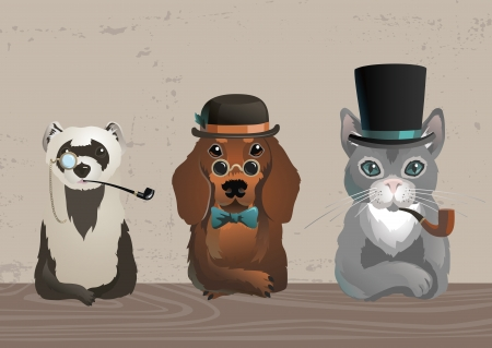 derby hats: Three animals in old style costumes Illustration