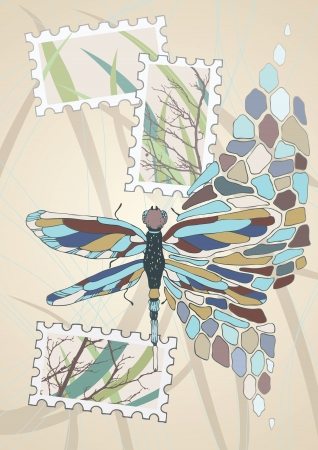 Transformation of stained glass dragonfly Stock Vector - 15303501