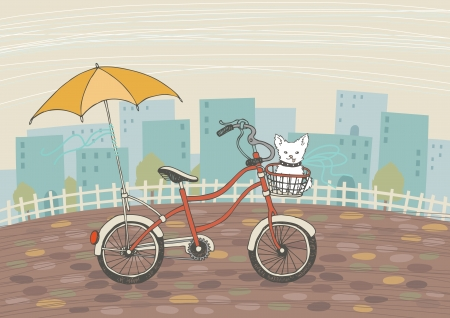 friend nobody: Bicycle and small dog in its basket