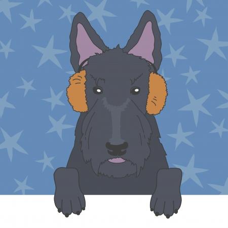 scottish terrier: Illustration of scottish terrier in fur earmuffs Illustration