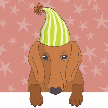 pompon: Illustration of dachshund in cap