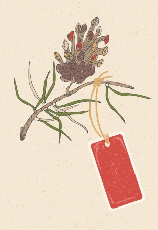 pine needle: Coniferous twig and red tag