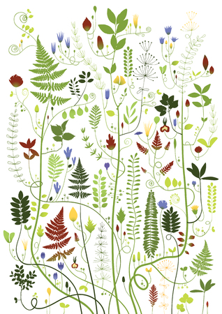 branched: Illustration of branched plants Illustration