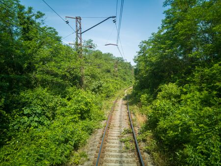 Railway in summer, the greenery disappearing into the distance in the Caucasus