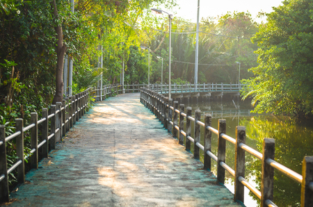 Bike path near canal at Bangkrachao,Bangkok, Thailand