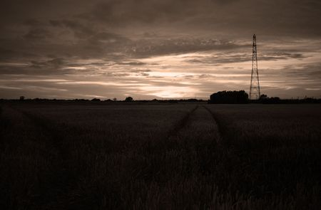 darkend and filter shot of a sunset over corn fields with electrical mast