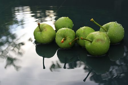 apple sat in water with reflection of the sky and trees above Stock Photo