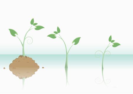 new life plant concepts