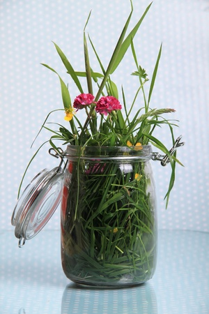 a big pot of grass and flowers against a dotted shiny background