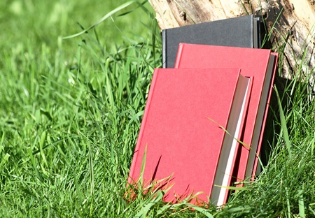 hardback: three hardback books stacked up against a tree log outside on green grass. Stock Photo