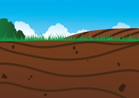 An illustration of a view underneath the soil, Eps V8  Vector
