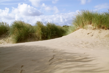 landscape shot of a sand dune against a blue sky with grass in view Stock Photo - 15642955