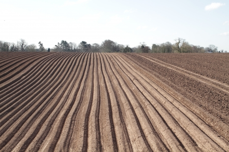an image of a ploughed field in straight lines in the spring time ready for crop planting Stock Photo