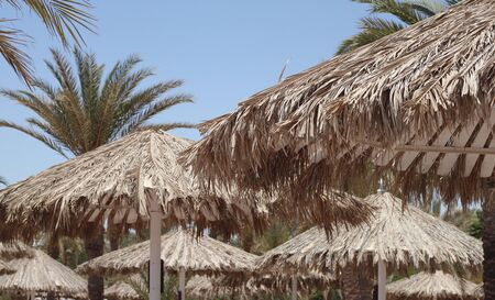 White beach umbrellas with roofs of palm branches on the beach 版權商用圖片