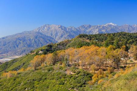 bernardino: San bernardino mountains, autumn time Stock Photo