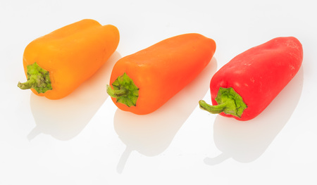 bell pepper: Multicolored Mini Sweet Bell pepper