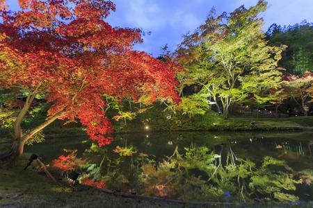 Superb view, fall color at Kodaiji Zen Temple, Japan in the autumn around november