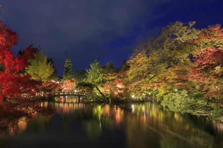 Superb view, fall color at Eikando Zenrinji, Japan in the autumn around november