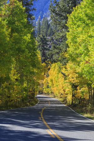 bucle: Beautiful fall color at June Lake Loop, California