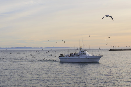 santa barbara: Great fish harvest at Santa Barbara, California around sunset time