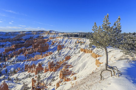 winter sunrise: Superb view of Sunrise Point, Bryce Canyon National Park at Utah Stock Photo