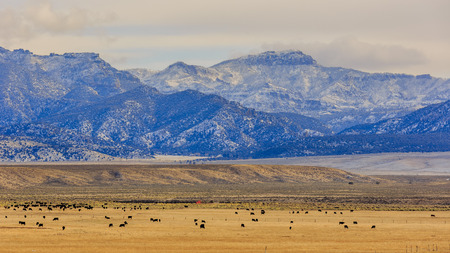 country side: Beautiful country side view near highway 15 with a great mountain view, Utah Stock Photo