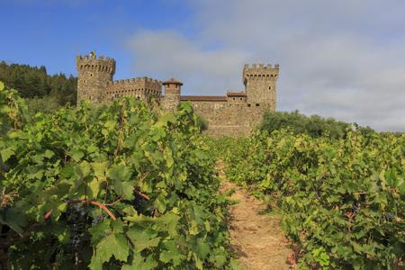 Napa Valley vineyard and castle, California Editorial