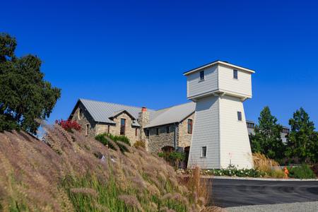 napa valley: Napa Valley Vineyard at California on a sunny day Editorial