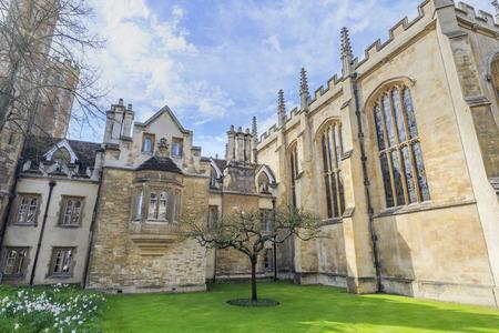 The famous Newton's Apple Tree at Cambridge University, United Kingdom 新聞圖片